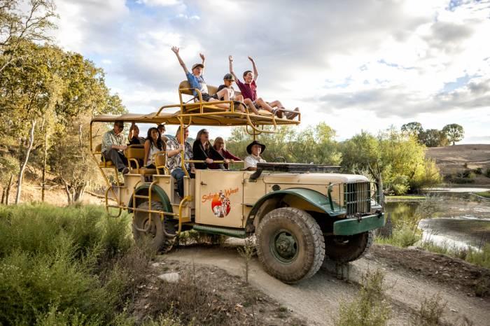 safari west 4.jpg