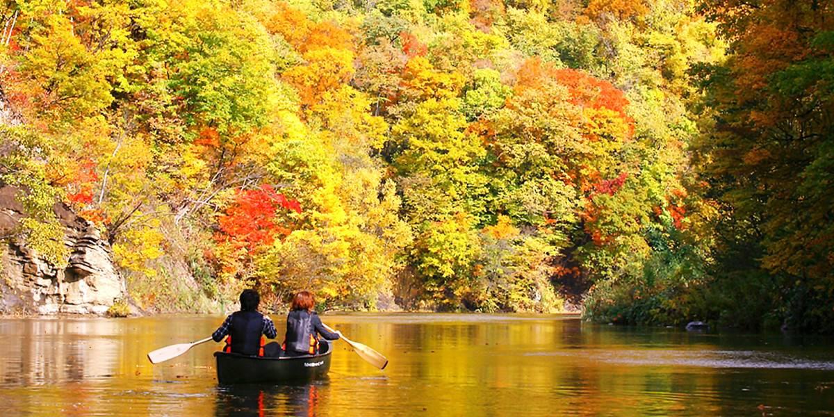 观赏秋季花卉和枫叶景色,度过轻松愉快的时光 (定溪山小镇的自然风光)图片