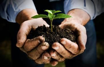 新农业的契机,探索传统与革新的有机农场【FarmedHere · Angelic Organnics有机农场】